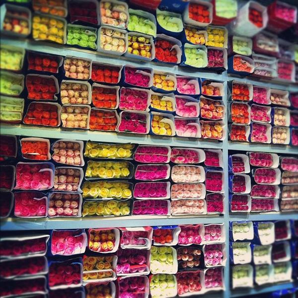 база цветов москва рижский рынок